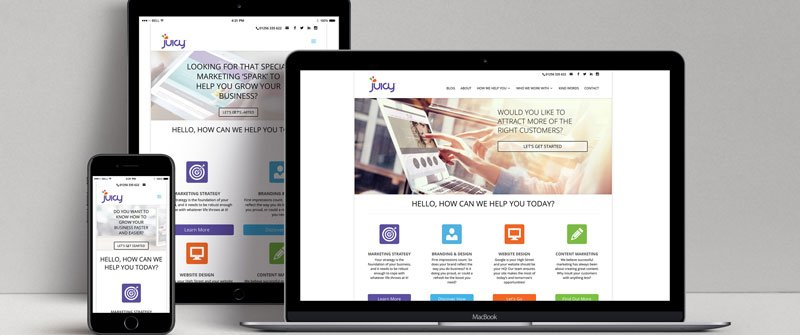 JUICY SPOTLIGHT ON: Responsive Web  Design Projects