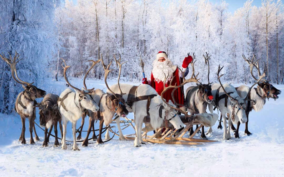 The most famous reindeer of all?