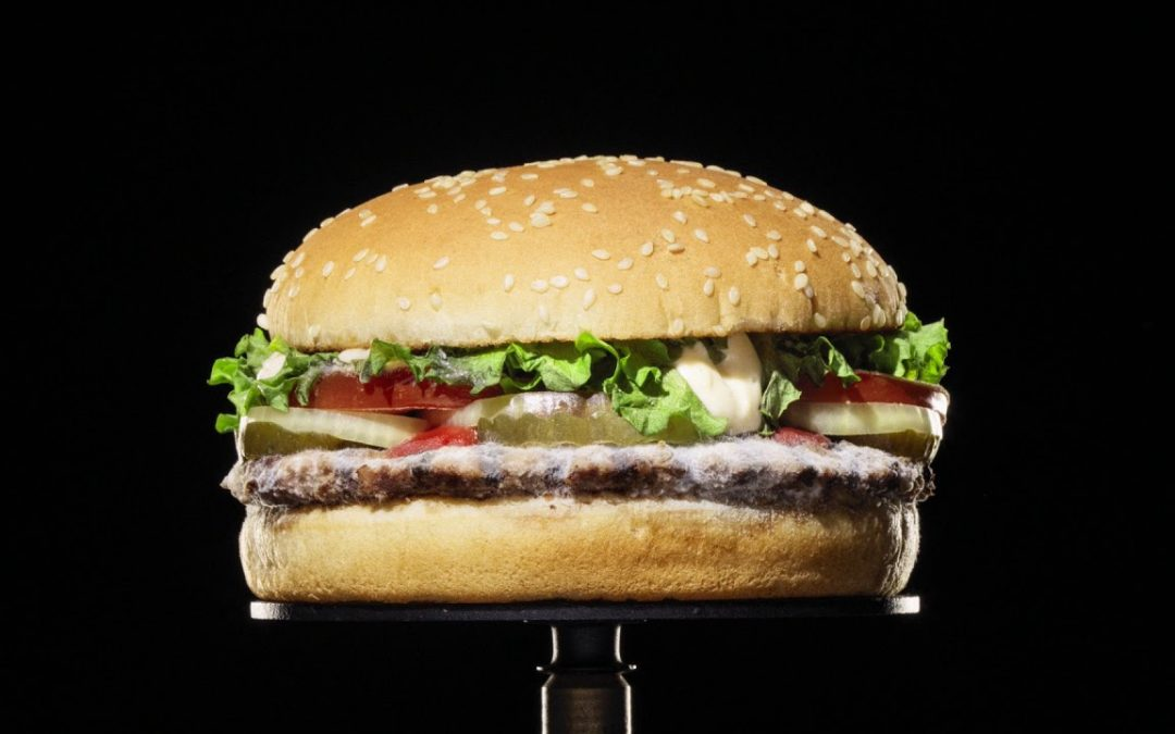 "Is Burger King's ""Mouldy Whopper"" a recipe for success?"